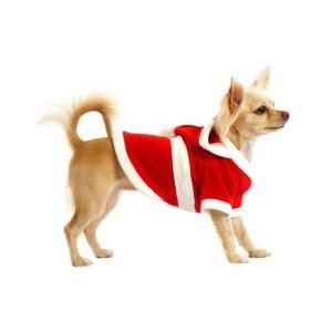 Image of 5679 Vestito da BABBO NATALE con cappuccio per cani di piccola e media taglia 6932200414582