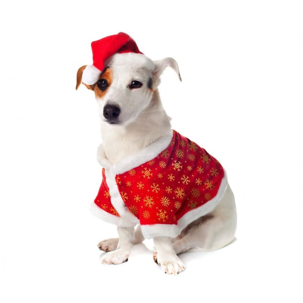 901097 Vestito natalizio FIOCCO DI NEVE per animali di piccola e cappello