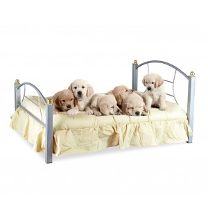 Lettino cuccia per cani e gatti 4595 SNOPY in ferro battuto 91 x 70 x 14.5 cm