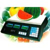 Bilancia digitale professionale elettronica da 5 gr. a 30 kg