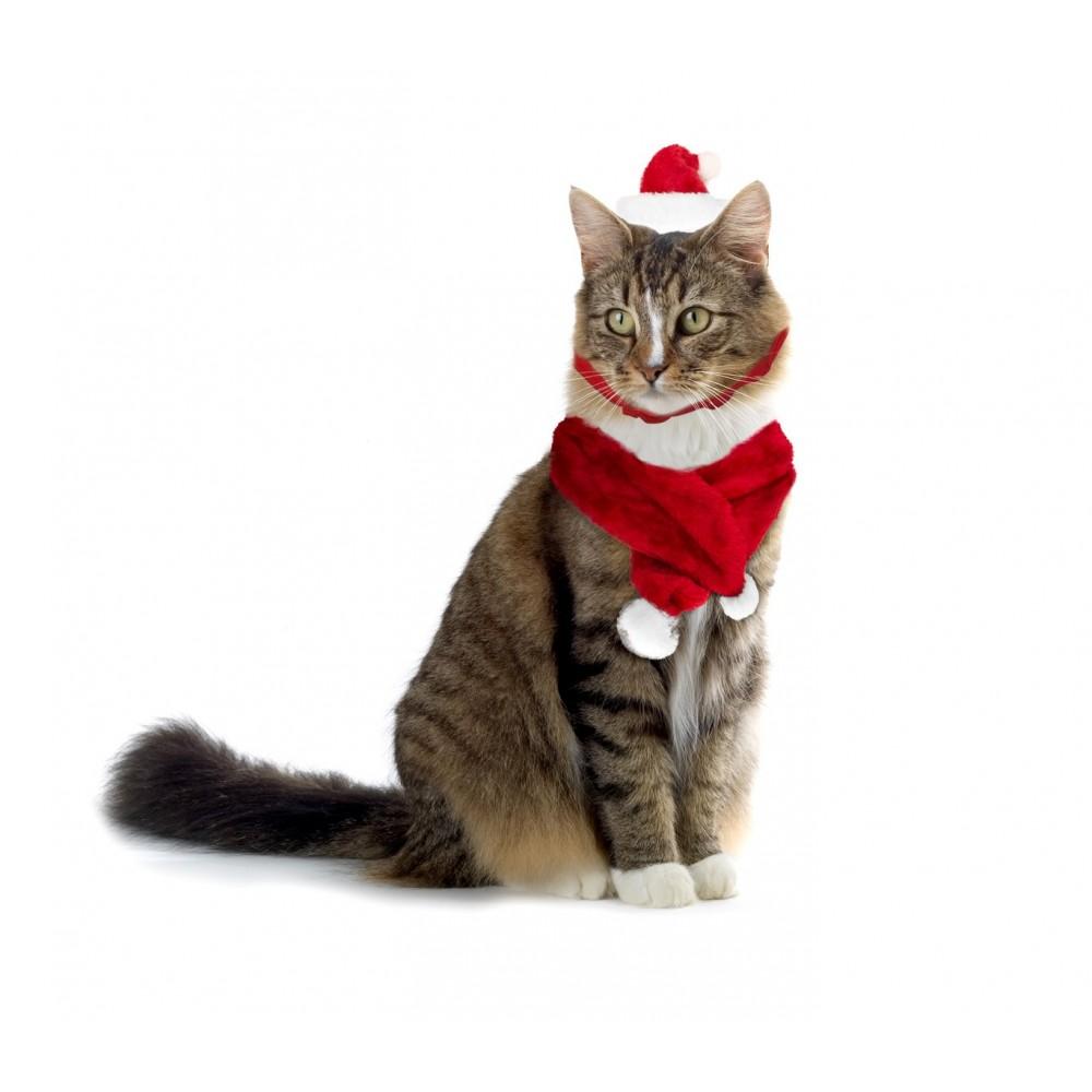 Set sciarpa e cappello babbo natale 064234 per gatti e for Marsupio per cani di piccola taglia