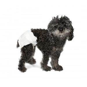 Pack 12 pannolini assorbenti per cani cattura odori con molle e fessura per coda