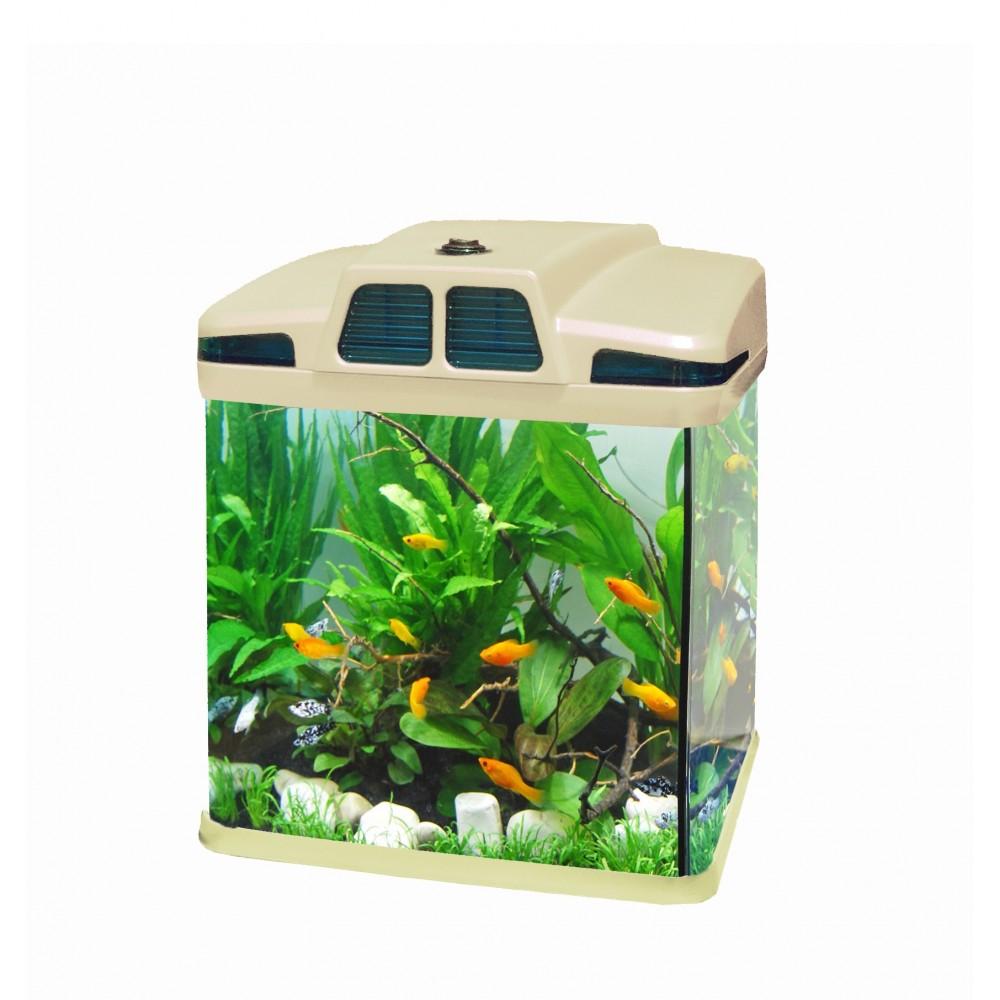 Acquario 6 litri 19x 15 x 27 cm luci led 4w con filtro for Filtro x acquario