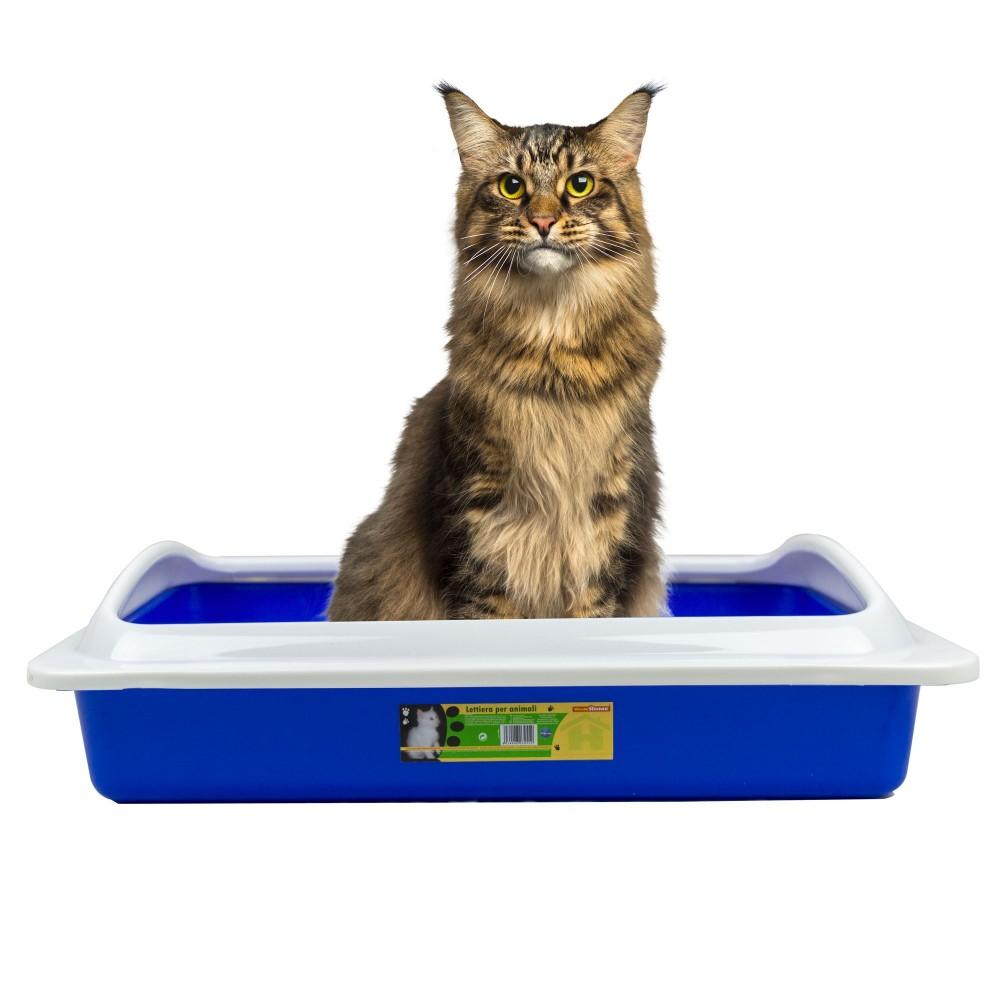 WELKHOME Lettiera 034552 con bordo rialzato smontabile per gatti 35x45x10cm