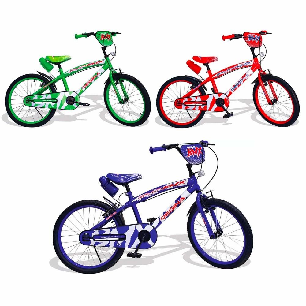 REGINA GVC-5425 Bicicletta per Bambini misura 20 con 2 Freni 3 colori