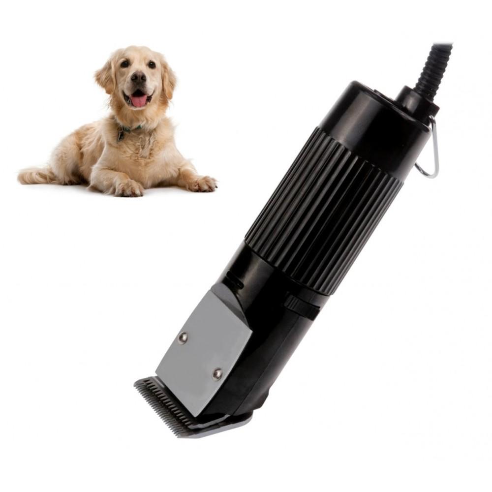 Macchina tosatrice professionale per cani 30W con lama di ricambio tosacane