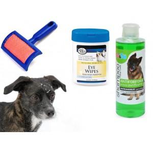 Kit pulizia completa cani shampoo salviettine e spazzola cardatore varie tipologie